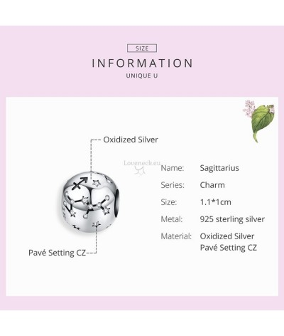 Silver charm signs of the zodiac